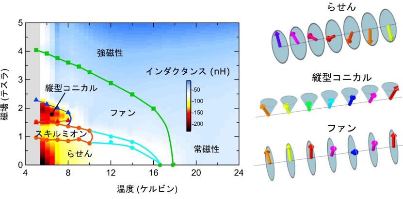 左)温度と磁場に対する磁気構造とインダクタンスの大きさを示すグラフ。グラフの色は、実験で測定したインダクタンスの大きさを表し、赤い部分はインダクタンスが大きい部分を、青い部分が小さい部分を示す。大きなインダクタンスが、らせん磁気構造相や縦型コニカル磁気構造相とった非共線的な磁気構造で観測された。水色の線で囲まれた領域は、磁気構造がまだ解明されていない相を示す。緑の線は、ファン相と強磁性相の境界を示す。 (右)非共線的な磁気構造の模式図。上から、らせん、縦型コニカル、ファン構造。矢印の向きがスピンの向きに対応する。