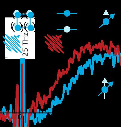図1 中赤外フェムト秒レーザーを用いた格子系(青),4f電子系(赤)それぞれへの共鳴励起による磁気異方性制御の概念図。(下)観測されたスピンダイナミクスの時間波形。フォノン系の励起による超高速加熱(青)ではスピン再配列が始まるまで熱化の時間を反映した3 ps程度の遅延が生じるが,4f電子系の共鳴励起(赤)では即座に再配列が生じる。